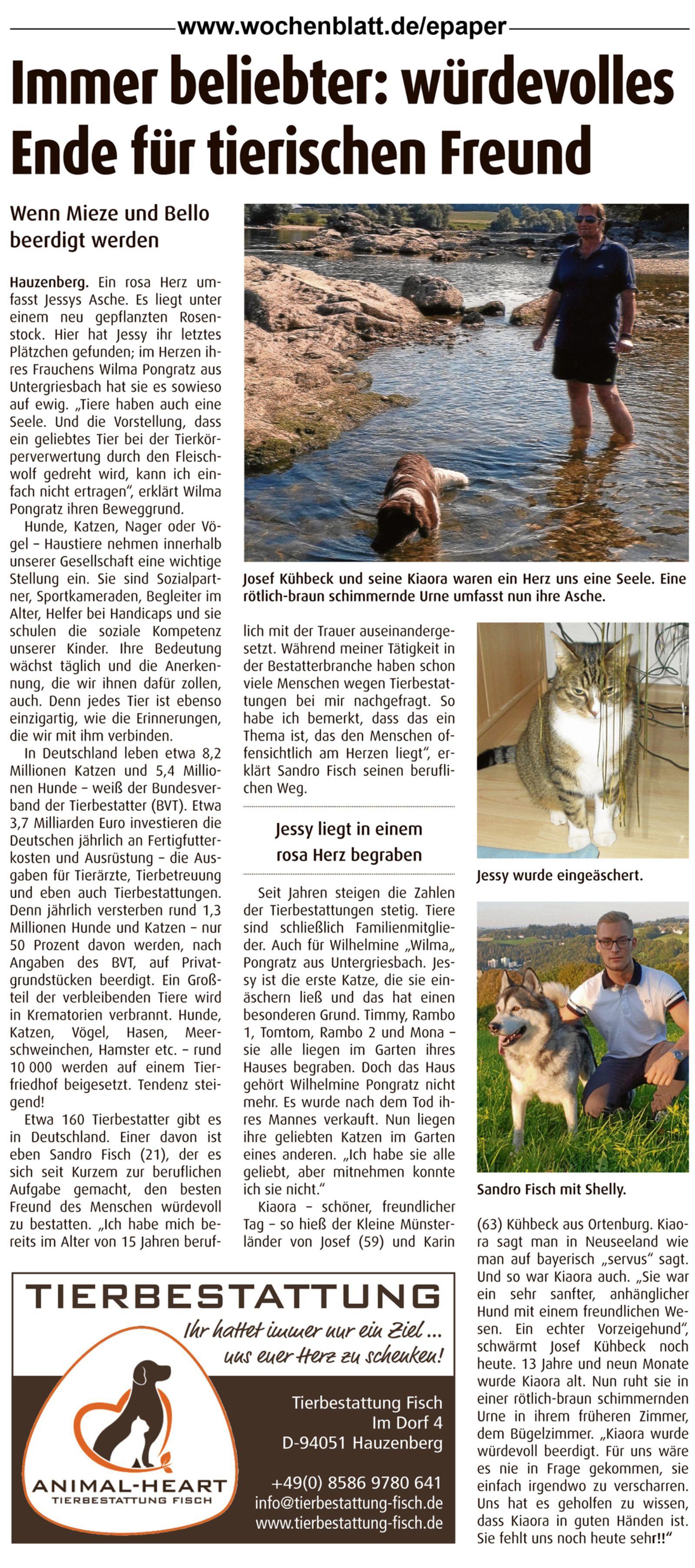 PaWo Artikel